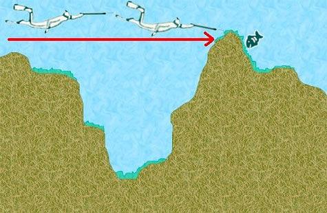 الصيد بالطريقة الهندية