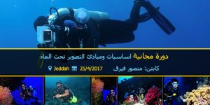 underwater-photography-course
