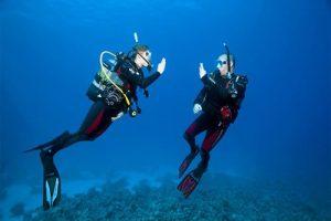 Open-Water-Diver-500×334